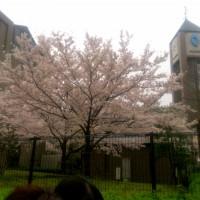 2015-04-03-09-42-24_deco.jpg